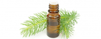Compra aceites esenciales de pino